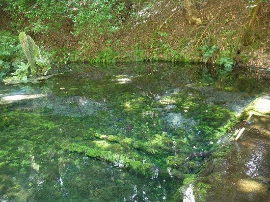 池山水源.jpg